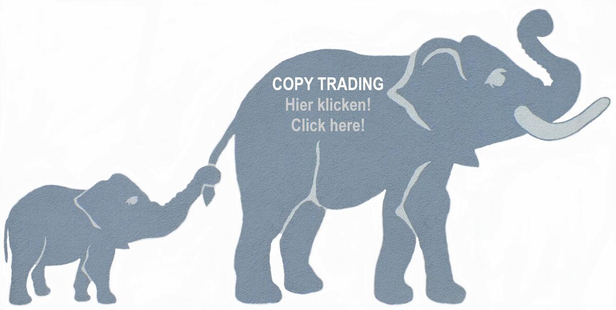 Copy Trading / Auto Trade /Mirror Trading / Social Trading / PAMM Account